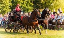 Pasiunea pentru cai, regasirea elegantei pe Domeniul Cantacuzino