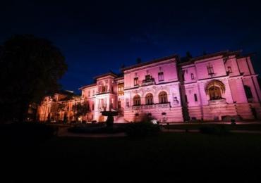 palatul_cotroceni-roz
