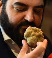 ITALY-GASTRONOMY-FOOD-TRUFFLES-AUCTION