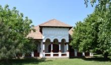 Conacul neoromanesc de la Nana, estimat de Artmark Historical Estate la 250.000 de euro